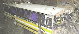 Four Die When Bus Hurtles Over Treetops