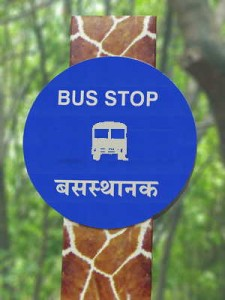 Vijayawada:  Car crashes  bus stop at 80 kmph, Kills 4