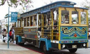 Waikiki Trolley Sends Woman to Hospital