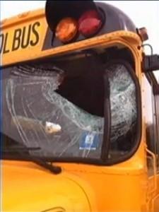 Schoolbus Struck by Wild Turkey